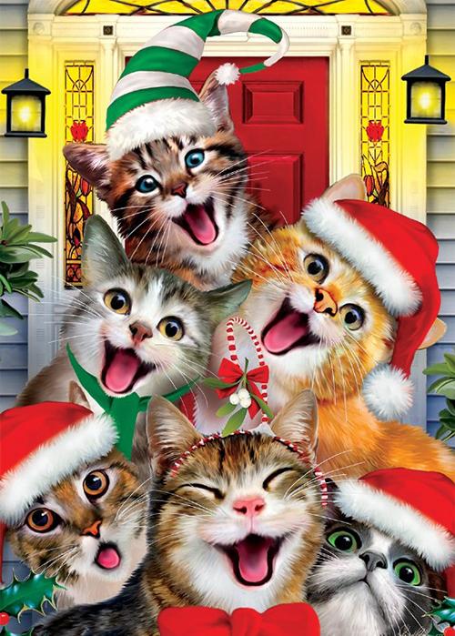 10 Cats Who Love Christmas